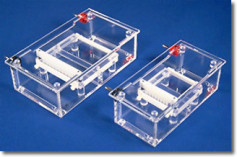 Horizontal Mini-Gel Units